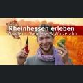 Rheinhessen erleben│Folge 7│Wandern, Weinlese & Winzeralm