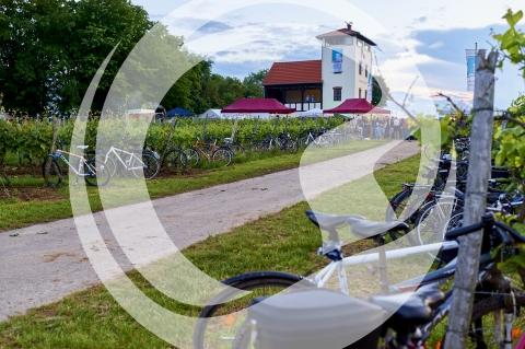 Mit dem Fahrrad zum Weinfest