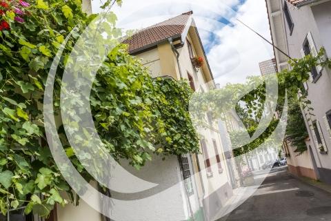Gästehaus Weingut Julianenhof Nierstein
