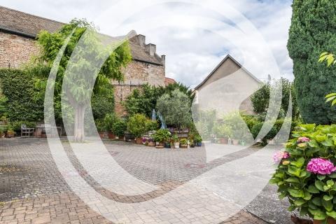 Innenhof Gästehaus Weingut Julianenhof Nierstein