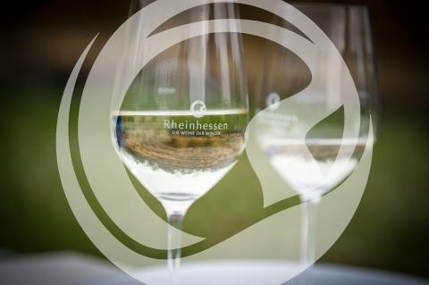 Rheinhessenwein Glas