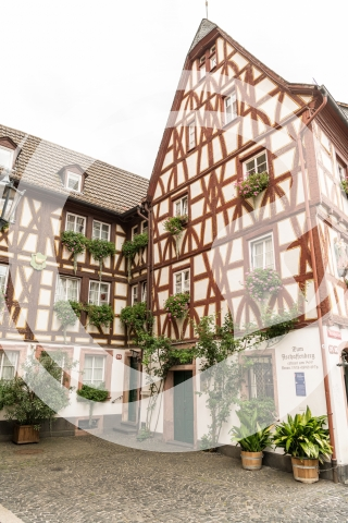 Fachwerk Mainzer Altstadt