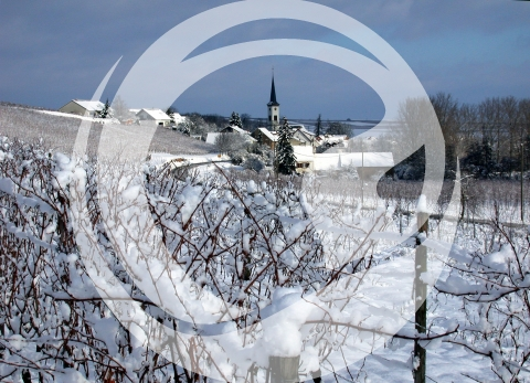 Winterblick auf Uffhofen