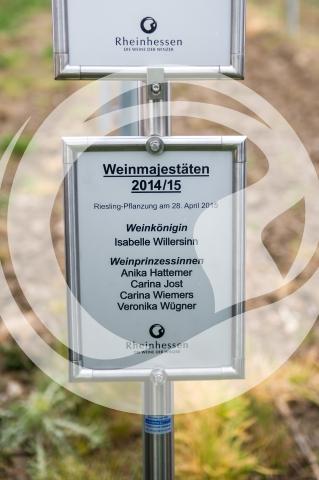 Schild der Rheinhessischen Weinmajestäten 2014/2015 im Majestätenweinberg
