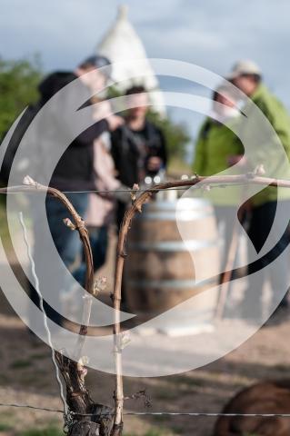 Trullo in Flammen - Weinfest ausgezeichnet