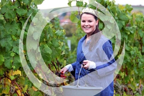 Laura Henrici, rheinhessische Weinprinzessin 2015/2016