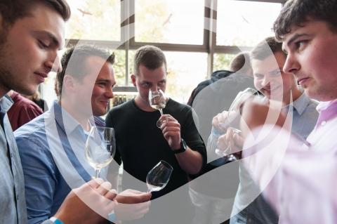 Besuchergruppen Weinforum Rheinhessen 2015