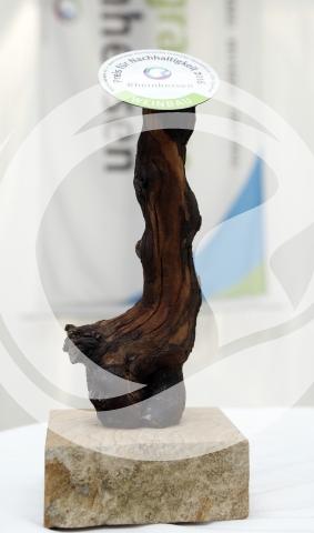 Preis für Nachhaltigkeit 2016 Kategorie Weinbau