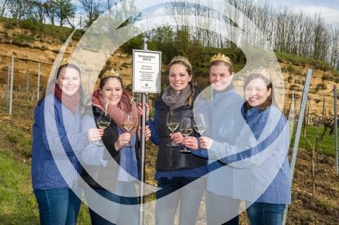 Rheinhessische Weinmajestäten 2015/2016