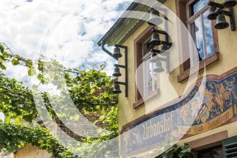Weingut St. Urbanshof Nierstein
