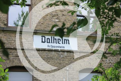 Amiche Radroute - Dahlheim