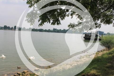 Amiche Radroute - Am Rhein