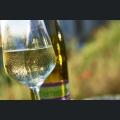 Scheurebe Wein der Vino Generation
