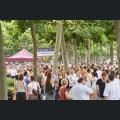 Mainzer Weinsalon After Work Party