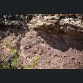 Boden am Roten Hang