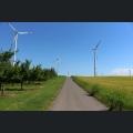 Hiwwel-Route; Etappe 3 Wörrstadt-Alzey