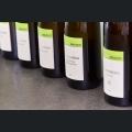 Weinflaschen Weingut Winter