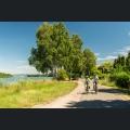 Rheinpromenade in Eich