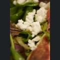 Salat mit frischen Feigen, Parmaschinken und Ziegenfrischkäse