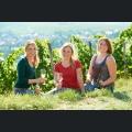 Weinmajestäten Team 2013/2014