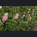 Rheinhessische Weinmajestäten