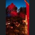 Rotweinfest Ingelheim - Weinfest ausgezeichnet