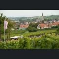 Wanderung zur Weinprobe am Weinlehrpfad-Weinfest ausgezeichnet