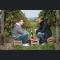 Weinfestbesucher zwischen den Rebzeilen