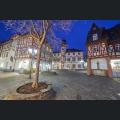 Alzey Fischmarkt